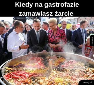 Gastrofaza