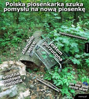 Polska piosenkarka