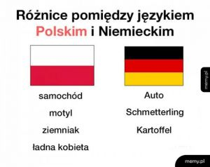 Różnica pomiędzy językiem