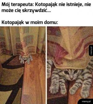Kotopająk