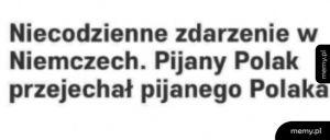 Pijani Polacy