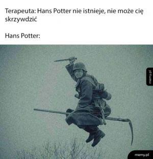 Hans Potter