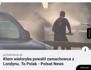 Niezwyciężeni Polacy