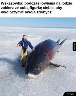 Na ryby
