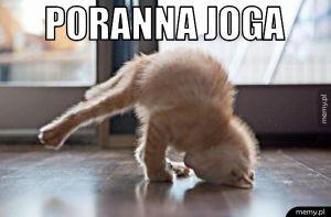 Poranna joga