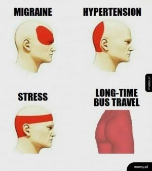 Długa podróż autobusem