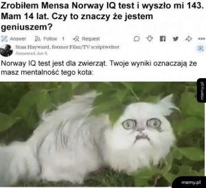 Mensa Norway