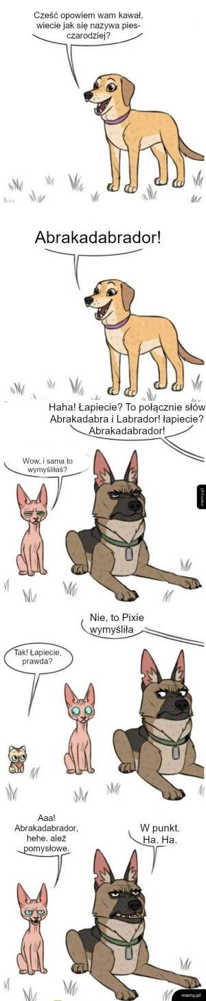 Abrakadabrador