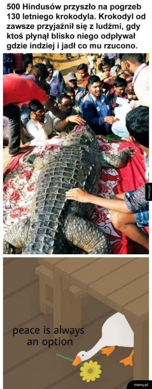 Pogrzeb krokodyla