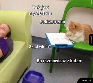 Kitku lekarz