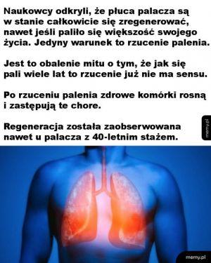 Dobra wiadomość dla palaczy