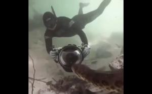 Podwodne niebezpieczeństwo