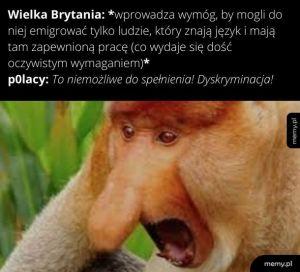 Najgorsze jest to, że w żadnej polskiej szkole nie uczą języka angielskiego