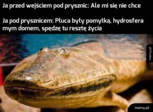 Pryszniol :)