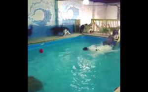 Czas na pływanie