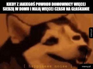 Radość dźwięk