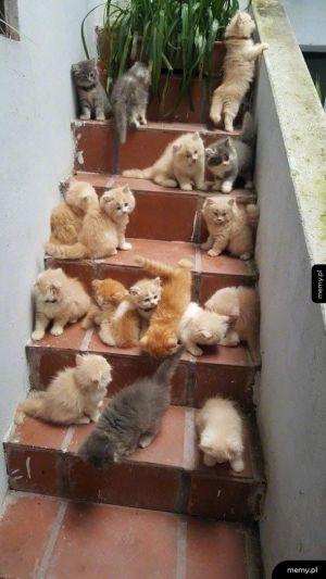 Czy to schody do nieba?