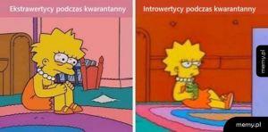 Ekstawertycy i introwertycy