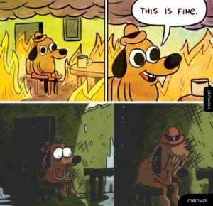 This isn't fine