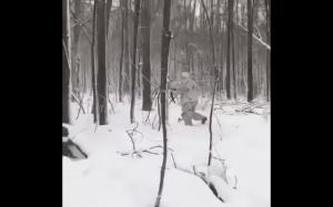 Natural born hunter