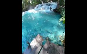 Woda przejrzysta jak w basenie