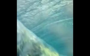 Jak fala wygląda pod wodą