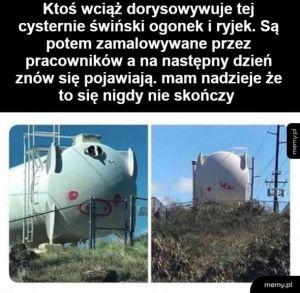 Wielka świnka
