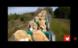 Misie w roller coasterze