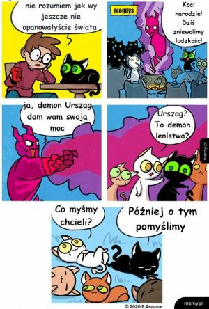 Kocie demony