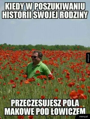 Poszukiwanie historii