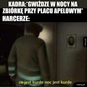 Co jest kurde