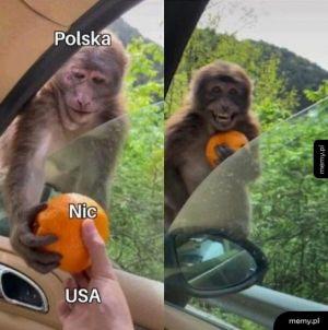 Polska i USA