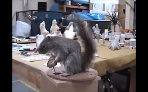 Wiewiórka z filmu Charlie i fabryka czekolady