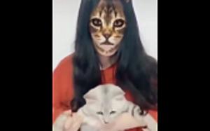 Zaskoczone koteły :D
