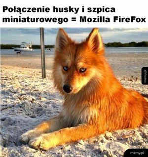 Mozilla Fierfox