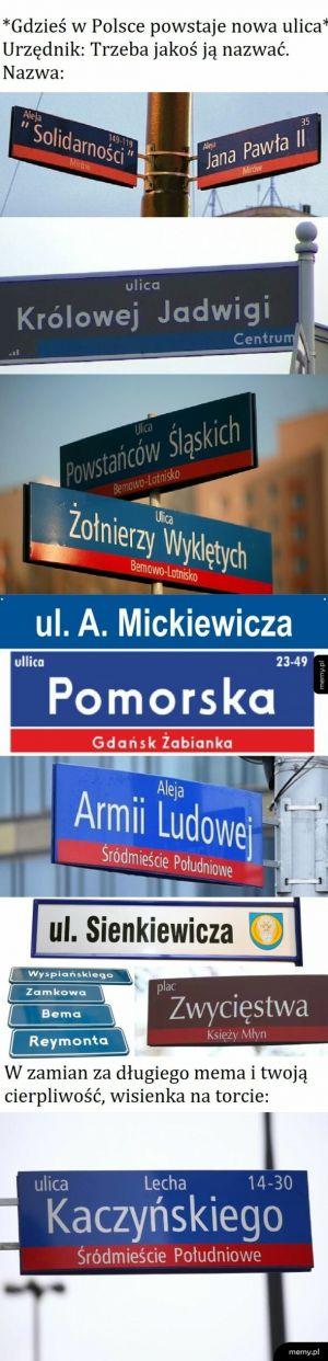 Polska kreatywnosc w nazewnictwie