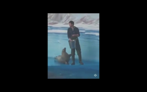 No daj wreszcie ta rybę!