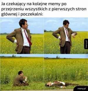 Przeglądanie memów