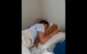 Koteł przytula swojego człowieka