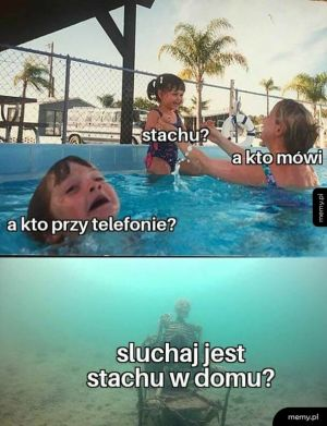 Stachu