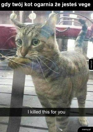 Zabiłem dla ciebie liścia