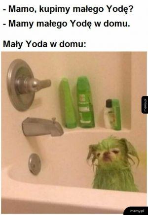 Mały, smutny Yoda