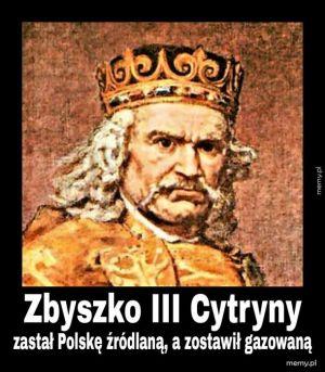 Z cyklu Królowie Polski