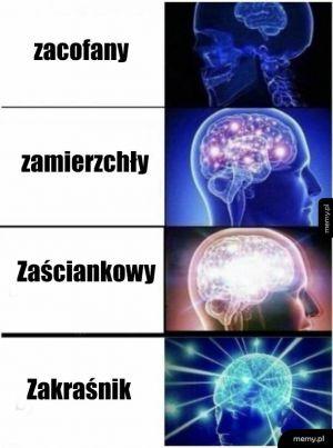 Zacofany