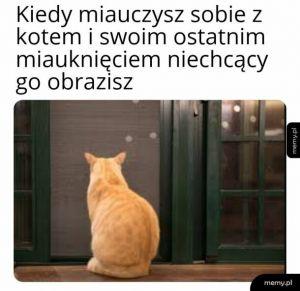Miauczenie z kotem
