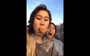 Kiedy próbujesz zjeść koci ogon