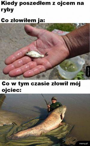 Ryby z ojcem