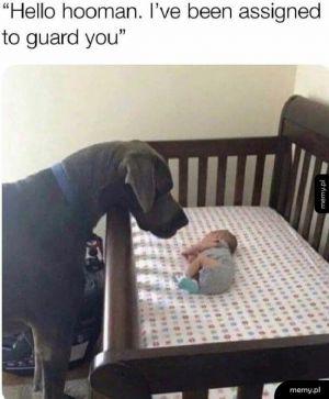 Zostałem wybrany by cię chronić