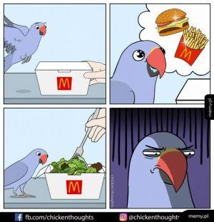 Nadzieje ptaszka
