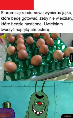 Napięta atmosfera wśród jajek